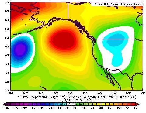 A ridge of high pressure sits in the Gulf of Alaska will it move away for the winter? Image via Weatherwest.com